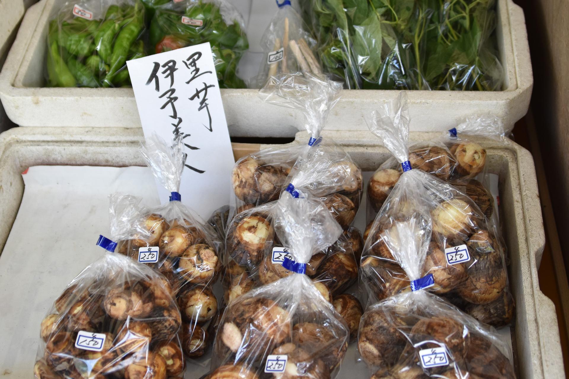 浄瑠璃菜菜市